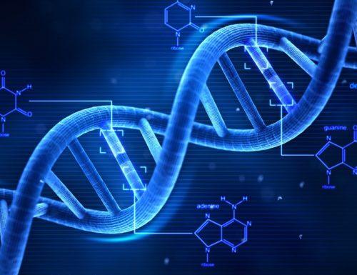 Atlante genetico