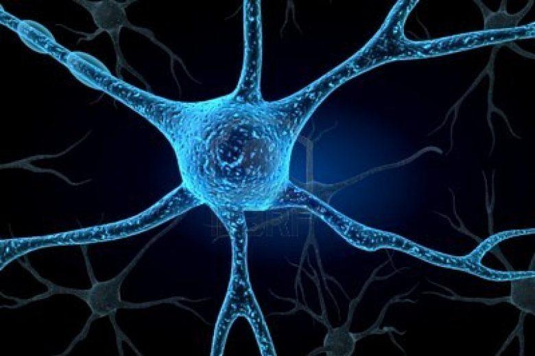 Neuroni della memoria